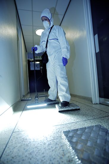 Forensic scene investigator using a ultraviolet light to detect footprints.